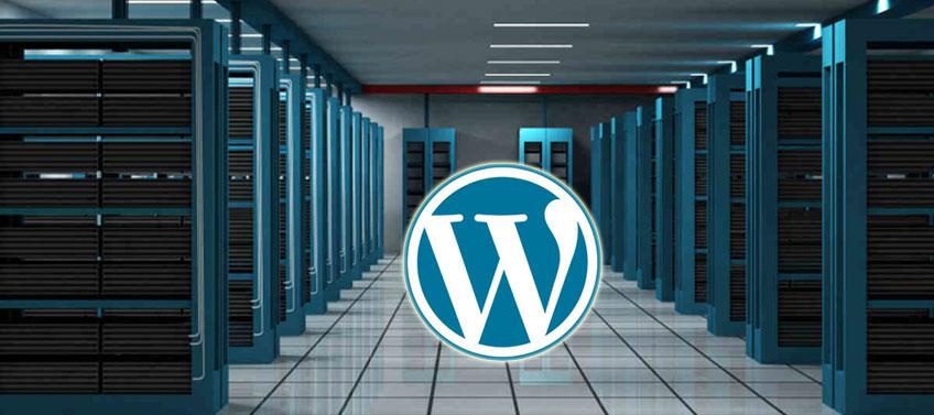 Kinh nghiệm chọn Hosting cho WordPress